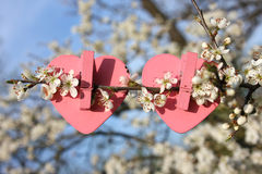 Dwa różowego serca na drzewie Fotografia Stock