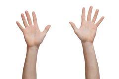 Dwa ręki podnoszącej up Zdjęcie Royalty Free
