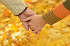 Dwa ręki wpólnie w parku Zdjęcie Royalty Free