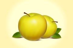 Dwa realistycznego zielonego jabłka z zielonym liściem Fotografia Royalty Free