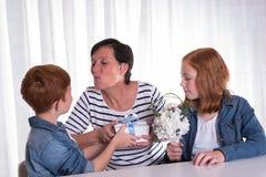 Dwa redhaired dzieciaka daje teraźniejszości ich matka Obraz Royalty Free