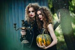 Dwa rocznik kobiety jako czarownicy Obraz Royalty Free