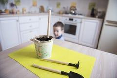 Dwa roku chłopiec ogrodnictwa puszkuje rośliny Zdjęcie Royalty Free