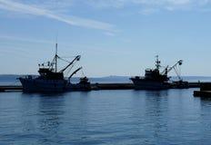 Dwa rybi łódkowaty czekanie dla początku obraz stock