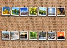 Dwa rzędu pstrobarwni wizerunki na grabić Obraz Royalty Free