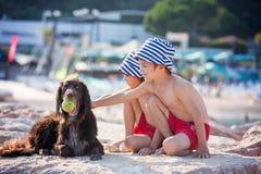 Dwa słodkiego dziecka, chłopiec, bawić się z psem na plaży zdjęcie royalty free