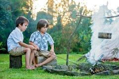 Dwa słodkiego dziecka, chłopiec bracia, obozuje na zewnątrz lata dalej Zdjęcie Royalty Free