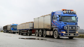 Dwa Scania ciężarówek łupu Sugarbeet Obraz Royalty Free