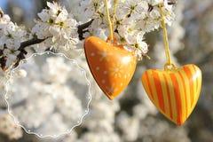 Dwa serca na drzewie - bezpłatna przestrzeń dla teksta Zdjęcia Stock