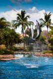 Dwa Skokowego delfinu 1 Zdjęcia Stock