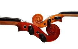 dwa skrzypce. Zdjęcia Stock