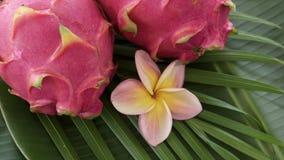 Dwa smoka Świeża Surowa Egzotyczna Tropikalna Tajlandzka owoc także dzwonił Pitayas Wiruje na Bananowym liściu zbiory wideo