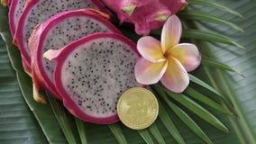 Dwa smoka świeża surowa egzotyczna tropikalna Tajlandzka owoc także dzwonił pitayas z cyfrowym cryptocurrency bitcoin wiruje dale zbiory wideo