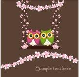Dwa sowy w miłości na huśtawce kwiaty Fotografia Stock