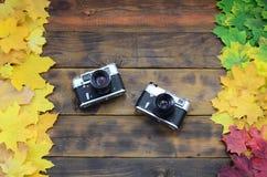 Dwa starej kamery wśród setu yellowing spadać jesień liście na tło powierzchni naturalne drewniane deski ciemnego brązu colo Zdjęcia Royalty Free