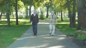 Dwa starszego przyjaciela chodzi w parku, oba nicestwienie, śmiertelny pojęcie, strata zbiory