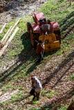 dwa stary człowiek pracuje z ciągnikiem Obrazy Royalty Free