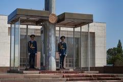 Dwa strażnika żołnierza na ałunu kwadracie Obraz Stock