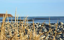 Dwa surfingowa czeka zimną wodę machają abstrakcjonistycznego bohkeh foregro Zdjęcia Stock