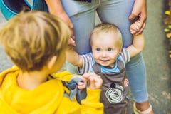 Dwa szczęśliwego brata w żółtych bluzach sportowa w jesień parku Obraz Stock
