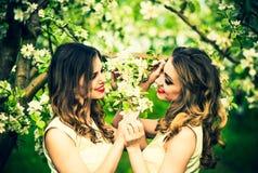 Dwa szczęśliwej ładnej dziewczyny zostaje pod okwitnięcie jabłonią Fotografia Stock