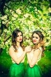 Dwa szczęśliwej ładnej dziewczyny zostaje pod okwitnięcie jabłonią Obraz Stock