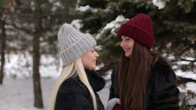 Dwa szczęśliwej dziewczyny chodzi w zima parku zbiory wideo