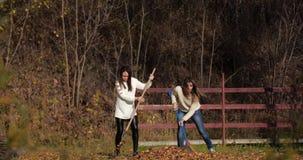 Dwa szczęśliwej dziewczyny czyścą liście w parku Żółty ulistnienie zbiory
