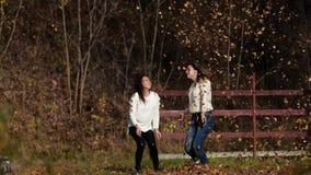 Dwa szczęśliwej dziewczyny z liśćmi w parku Żółty ulistnienie zbiory