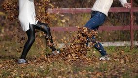 Dwa szczęśliwej dziewczyny z liśćmi w parku Żółty ulistnienie zdjęcie wideo