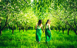 Dwa szczęśliwej ładnej dziewczyny chodzi na jabłoniach uprawiają ogródek Fotografia Stock
