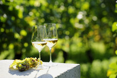 Dwa szkła biały wino Obraz Stock