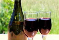 Dwa szkła wino stojak na stole przed naturą fotografia stock