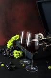 Dwa szkła win winogron gramofonu talerza retro Zdjęcia Royalty Free