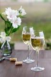 dwa szklanek wina Zdjęcia Stock