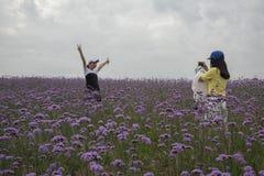 Dwa turysty cieszą się kwiaty i biorą fotografie obraz royalty free