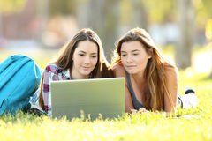 Dwa ucznia uczy się na linii z laptopem Zdjęcia Stock