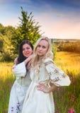 Dwa ukraińskiej dziewczyny w krajowych kostiumach przy łąką zdjęcie royalty free