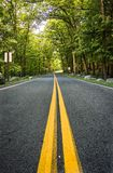 Dwa uliczna żółta linia Fotografia Stock