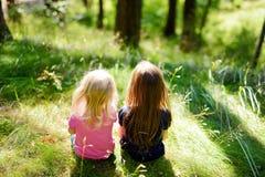 Dwa uroczej małej siostry wycieczkuje w lesie zdjęcie royalty free