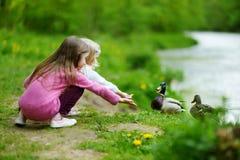 Dwa uroczej siostry karmi kaczki rzeką Fotografia Stock