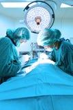 Dwa weterynarzów doktorski działanie w sala operacyjna wp8lywy z sztuki oświetleniem i błękit filtrujemy Fotografia Stock