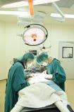 dwa weterynarzów doktorski działanie w sala operacyjnej Fotografia Royalty Free
