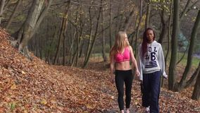 Dwa wielokulturowej sport dziewczyny opowiadają podczas spaceru wzdłuż jesień parka zbiory wideo