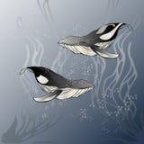 Dwa wieloryba na błękitnym tle, ilustracja Zdjęcie Royalty Free