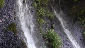 Dwa wiosny woda zbiory wideo