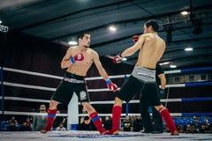 Dwa wojownika mieszane pojedyncze walki nieśli out pojedynek Zdjęcie Royalty Free