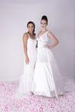 Dwa Wspaniałej Młodej panny młodej jest ubranym Bridal togę Zdjęcie Stock