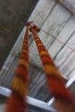 Dwa wspinaczkowej arkany Fotografia Royalty Free