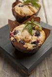Dwa yummy czarnej jagody muffins z sprig mennica Obrazy Stock